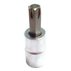 T40 Torx Bit, Satin Chrome 3/8 Square Drive Bit Holder